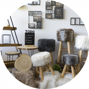 Runde Bilder 2019 Showroom